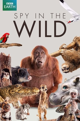 Poster of Spy in the Wild