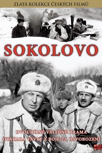 Poster of Sokolovo