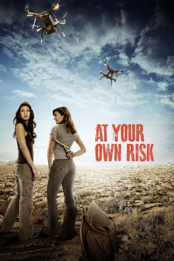 Poster of At Your Own Risk