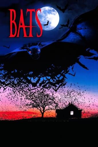 Poster of Bats (Murciélagos)