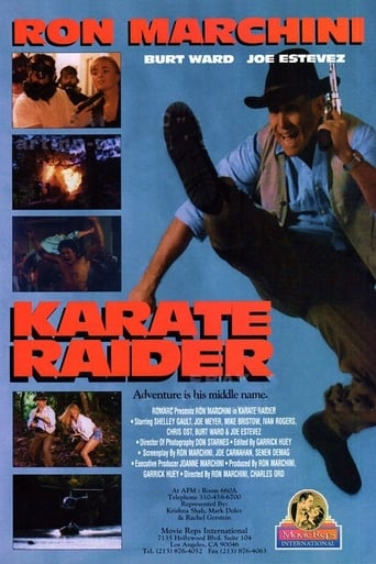 Poster of Karate Raider