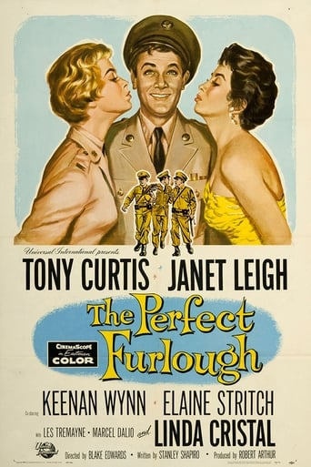 Poster of The Perfect Furlough