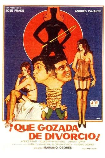 Poster of ¡Qué gozada de divorcio!