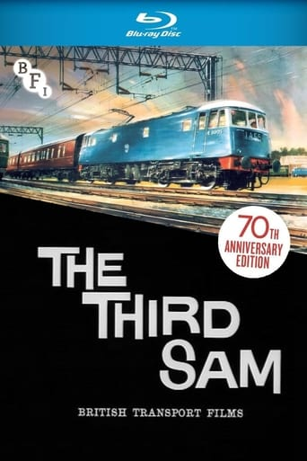 Poster of The Third Sam