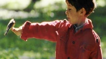Все може трапитись (1995)
