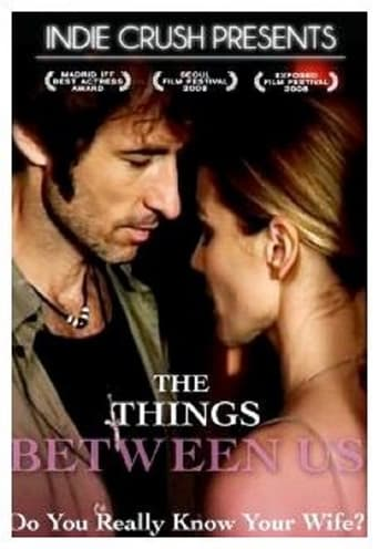 Poster of The Things Between Us