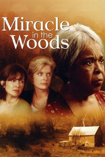 Poster of Miracle in the Woods