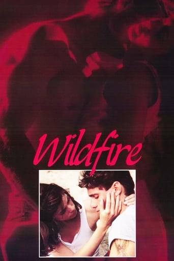 Poster of Wildfire