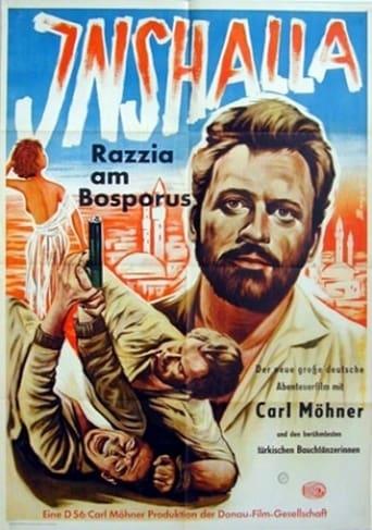 Inshalla - Razzia am Bosporus