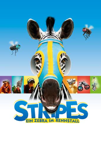 Im Rennstall ist das Zebra los - Komödie / 2005 / ab 0 Jahre