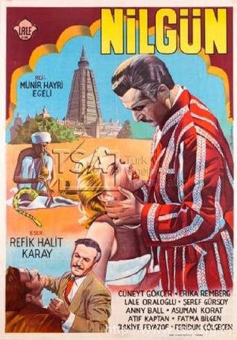 Poster of Nilgün