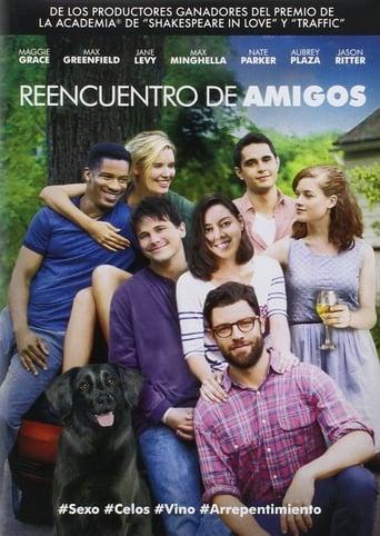 Poster of Reencuentro de amigos