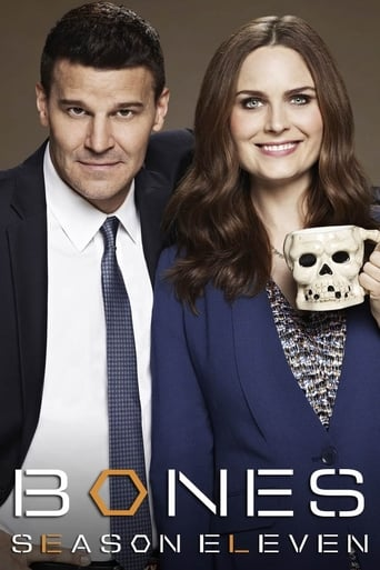 Bones 11ª Temporada - Poster