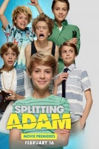 Poster of Splitting Adam