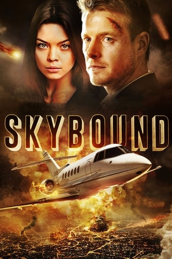 Poster of Skybound