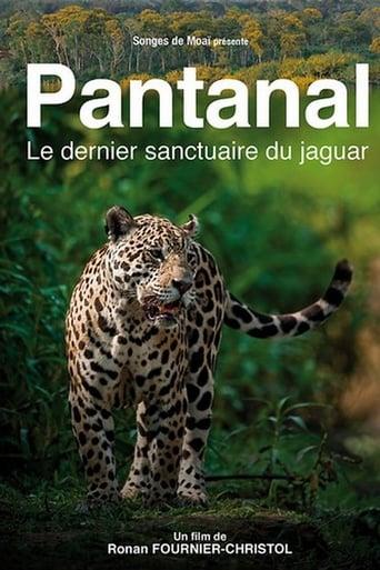 Pantanal, le dernier sanctuaire du jaguar