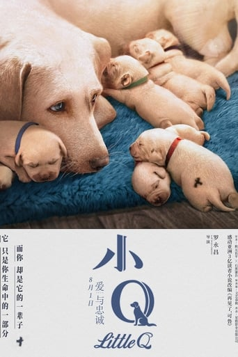 Poster of 小Q