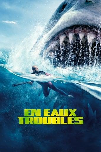 Poster of En eaux troubles