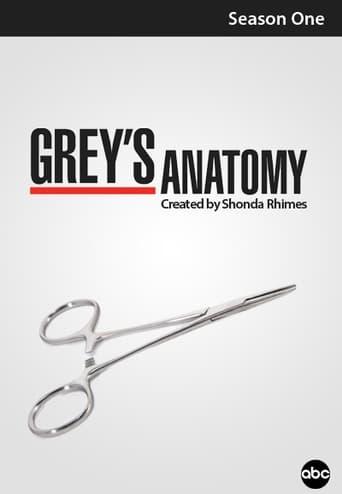 Grei anatomija / Grey's Anatomy (2005) 1 Sezonas
