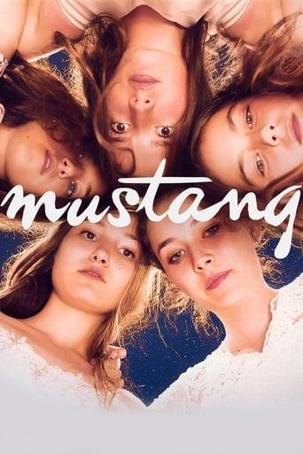 Mustang streaming