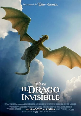 Poster of Il drago invisibile