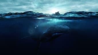 Глибина (2021)