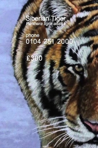 Watch Siberian Tiger 2012 full online free