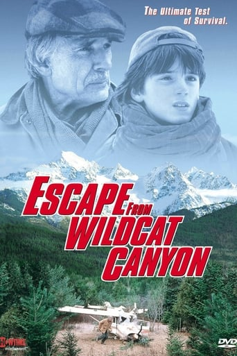 Poster of Escape from Wildcat Canyon