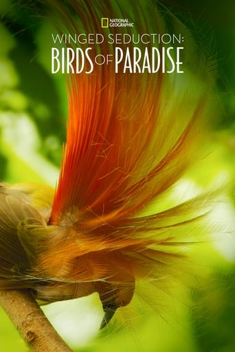 Winged Seduction: Birds of Paradise poster