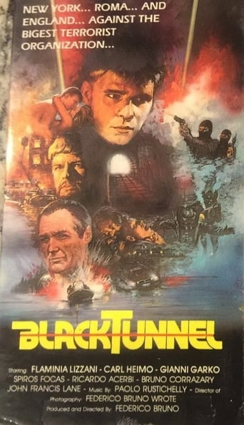 Poster of Black Tunnel