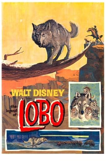 'The Legend of Lobo (1962)