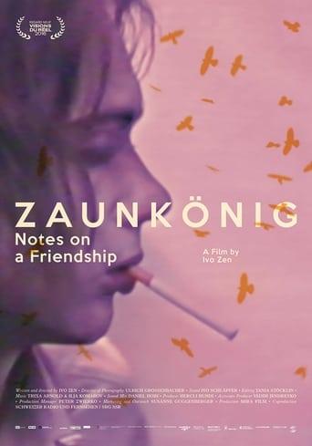 Ver Zaunkönig: Tagebuch einer Freundschaft pelicula online