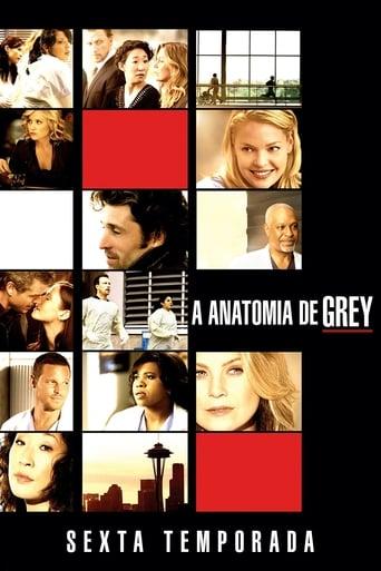 Anatomia de Grey 6ª Temporada - Poster