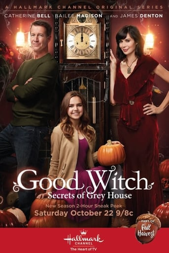 Geroji Ragana: Grėjaus namo paslaptys / Good Witch: Secrets of Grey House (2016) LT SUB