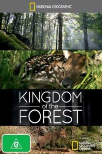 Film Lesní království
