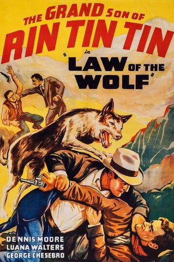 Poster of Law of the Wolf
