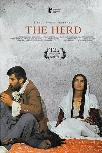 Poster of Sürü