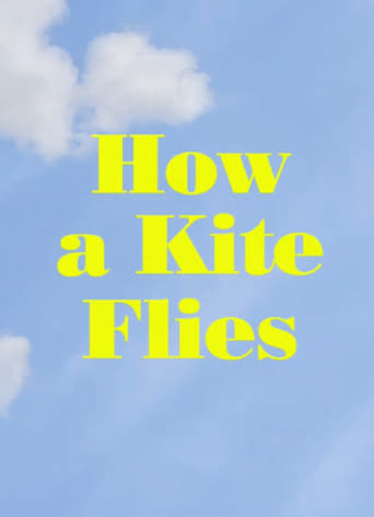 Poster of How a Kite Flies