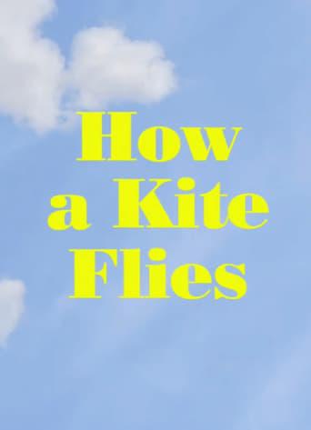 How a Kite Flies
