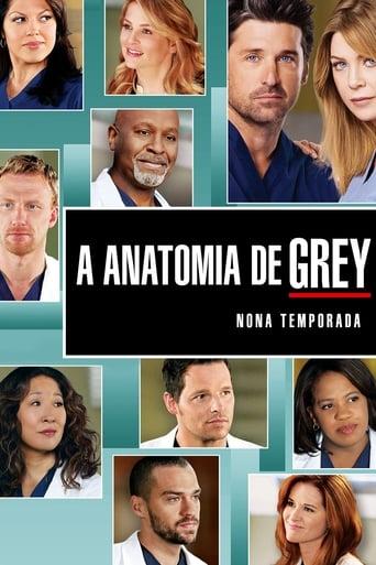 Anatomia de Grey 9ª Temporada - Poster