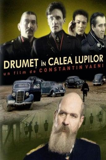 Poster of Drumeț în calea lupilor