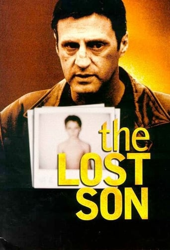 Poster of The Lost Son
