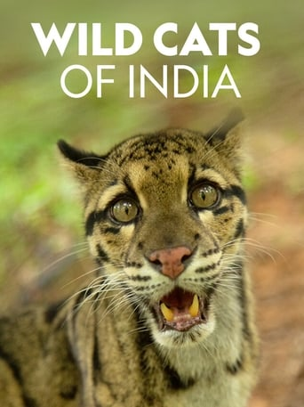 Indiens Wildkatzen