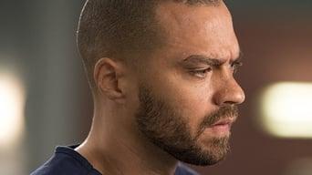 TVRaven - Grey's Anatomy season 14 (S14) full episodes online