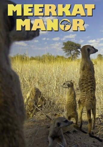 Poster of Meerkat Manor