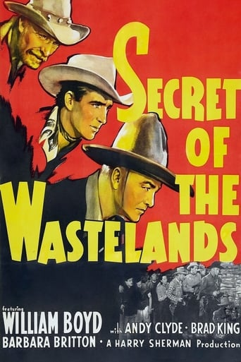 Poster of Secrets of the Wastelands