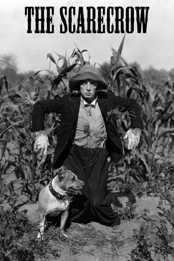 Poster of The Scarecrow