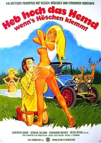 Poster of Liebe durch die Autotür