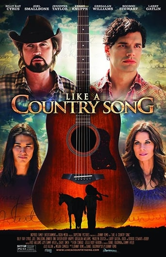 Poster of Like a Country Song