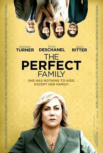 Poster of The Perfect Family
